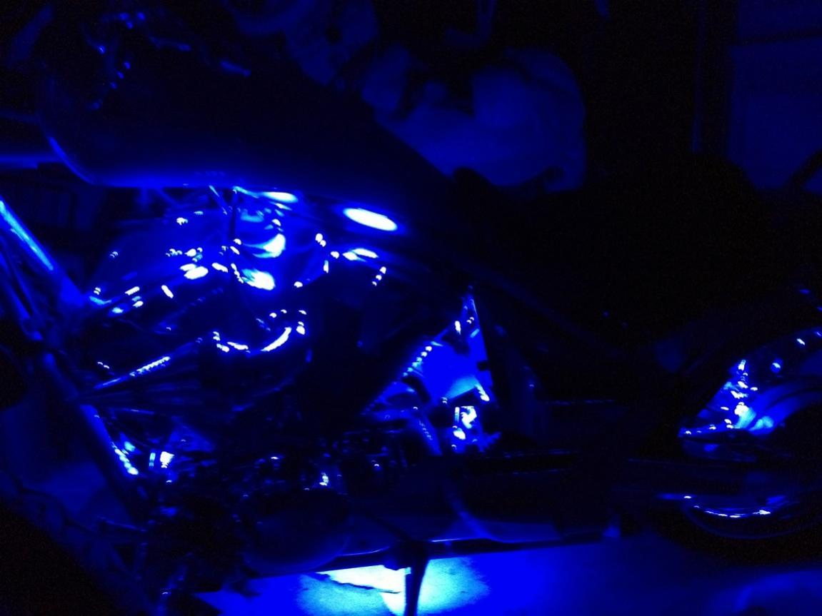 New Lizard Lights LED's installed-leds-2.jpg