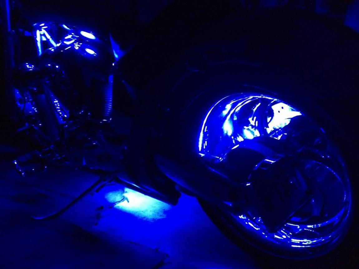 New Lizard Lights LED's installed-leds-3.jpg