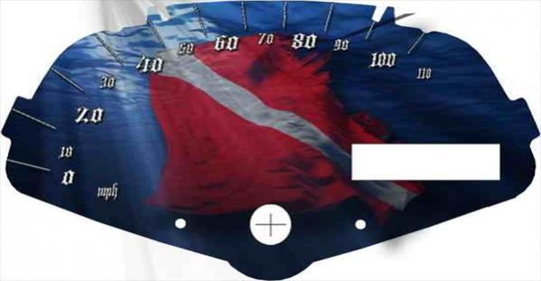 Webslinger speedo-speedo-flag.jpg